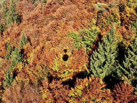 Schattenspiel der Gondel auf die Kampenwand im Herbst, © Manuela Maier