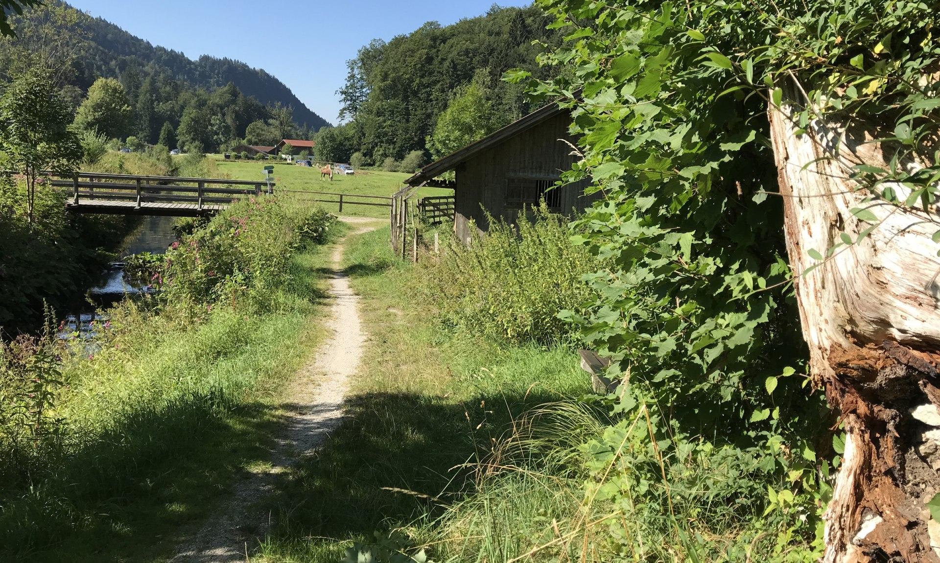WaldApotheke Sachrang - Weg vor der Prienbrücke nach Berg