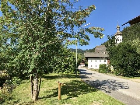 WaldApotheke Themenweg Sachrang - Eberesche, © Tourist Info Aschau im Chiemgau