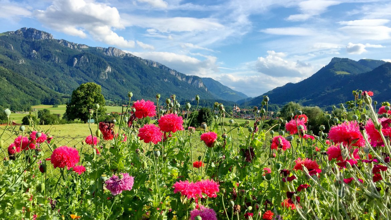 Blick ins Priental - Aschau im Chiemgau, © H. Reiter