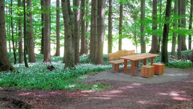 15_Waldesruh gestiftet vom SalzAlpenSteig, © Tourist Info Aschau i.Ch.