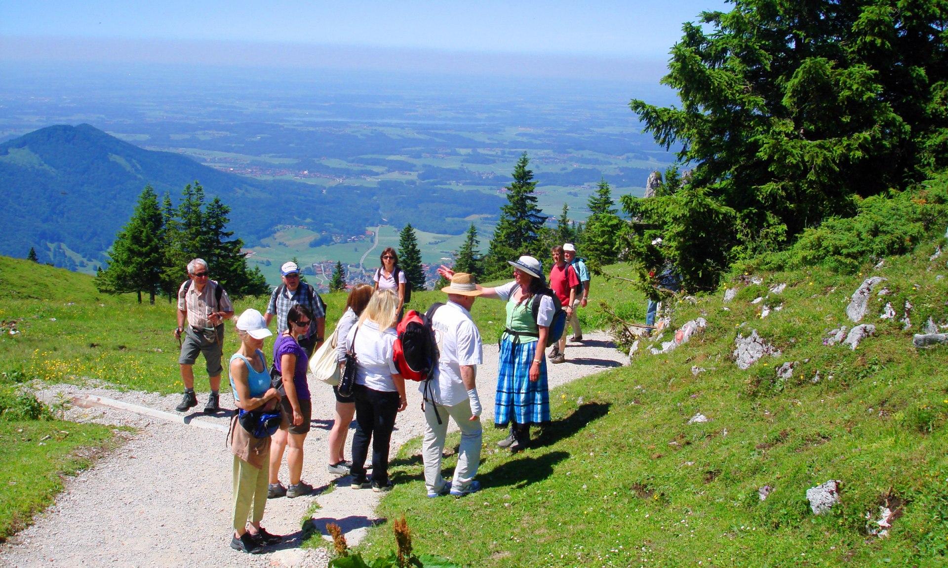 Bergblumenführung auf der Kampenwand, © Tourist Info Aschau i.Ch.