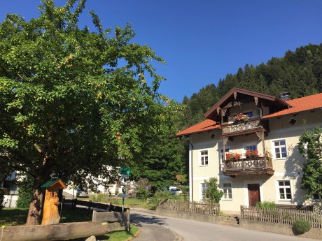 WaldApotheke Themenweg Sachrang - Apfelbaum im Ort mit Brunnen, © Tourist Info Aschau im Chiemgau