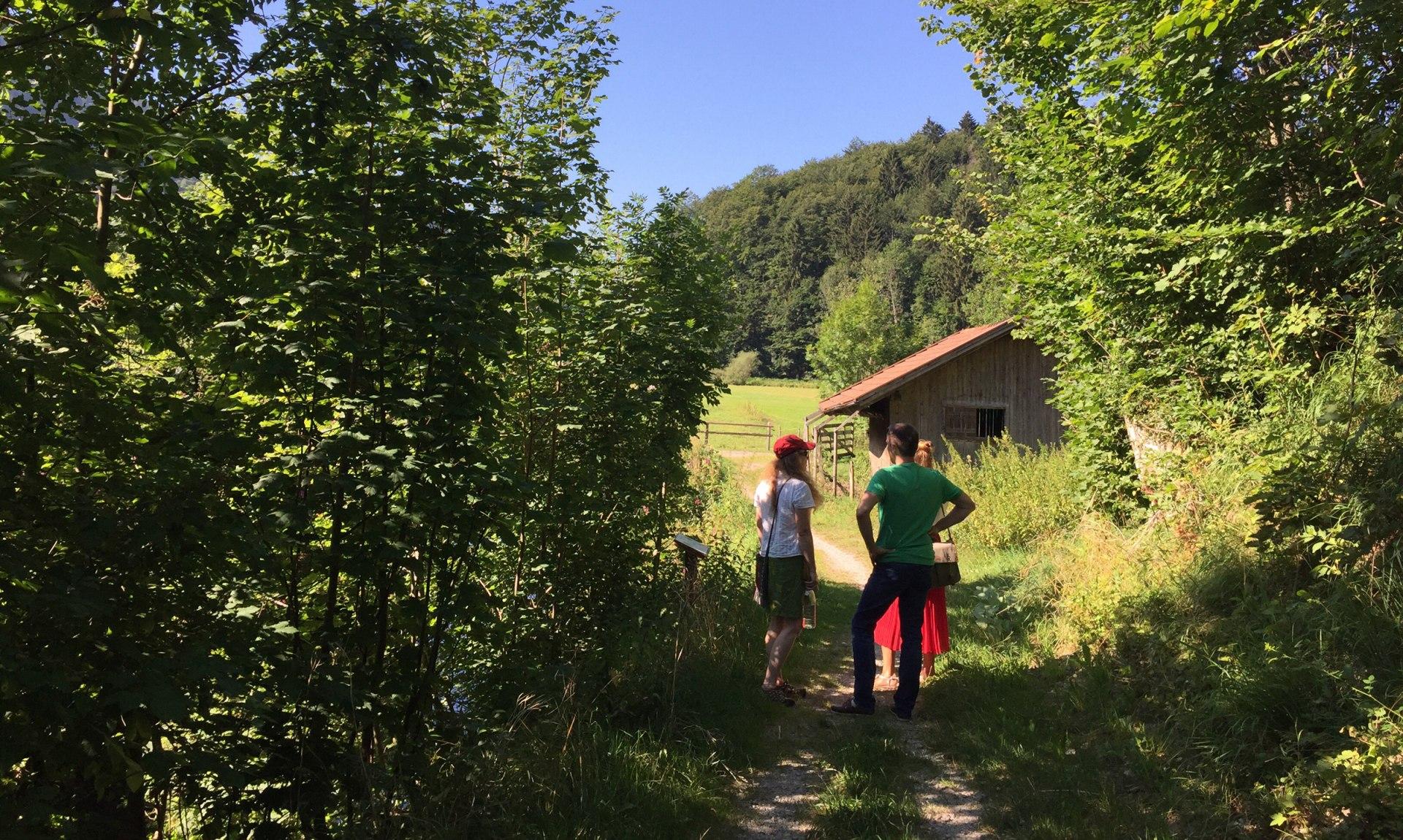 WaldApotheke Sachrang, © Tourist Info Aschau im Chiemgau