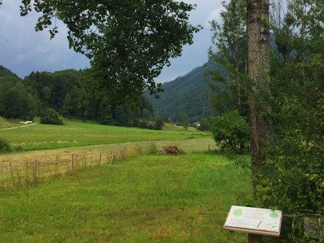 WaldApotheke Themenweg Sachrang - Espe, © Tourist Info Aschau im Chiemgau